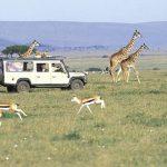 Reserva Masai Mara – Kenia