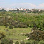 Casa de Campo – Madrid