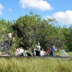 el Parque Nacional Everglades en Florida, Estados unidos